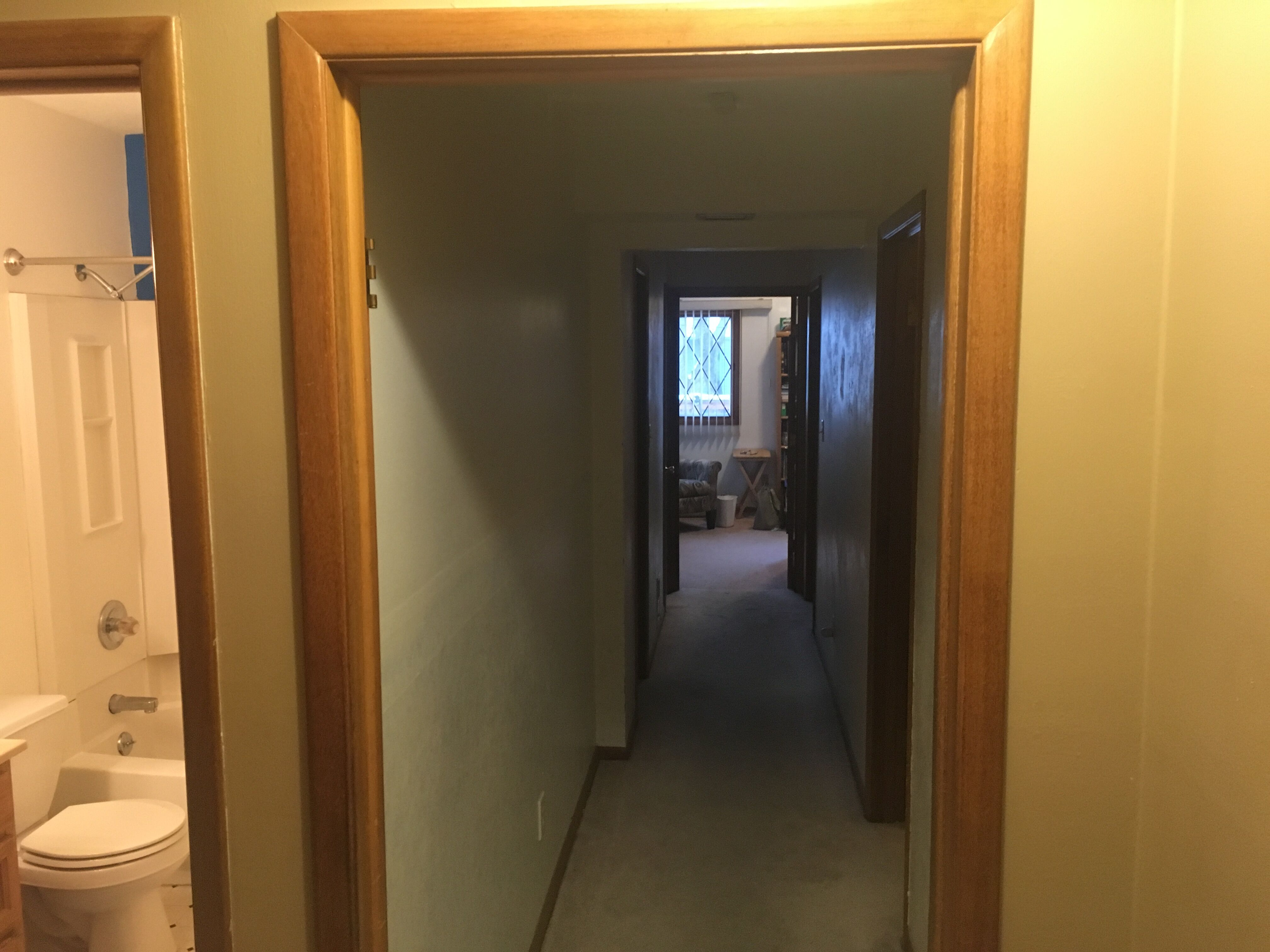Whole Home Remodel Hallway Before